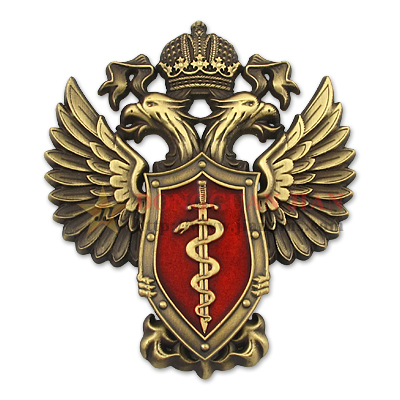 Russian Military Badges